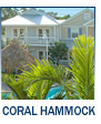 Coral Hammock vacation rentals
